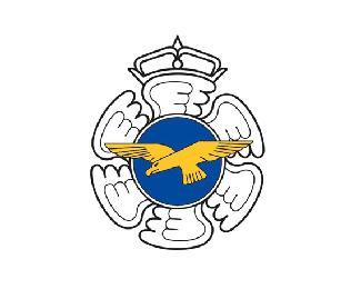 芬兰空军2020年标志
